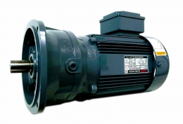 Helical Gear Type(MFG) - Vertical(0.2kw~5.5kw) (DSK Geared Motor/DSK 기어드모터/감속기/모터)