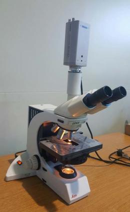 생물현미경