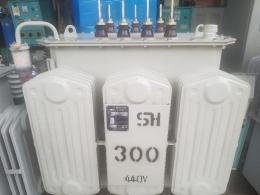 TR 300kva 380/440v 다운/승압 변압기, 신품변압기