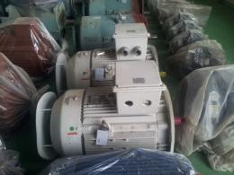 효성 신형 버티컬 모터 100HP*2P*60HZ*440V