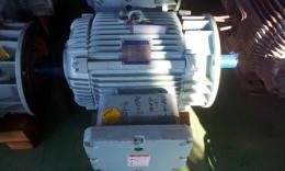 효성 버티컬 내압 방폭형 모터 30HP*6P*440V