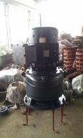 제일 내압 방폭형 버티컬 기어드 50HP*4P*60HZ*380V (1/20)
