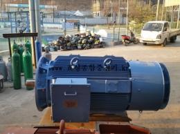 현대 버티컬 모터 500HP*6P*60HZ*440V