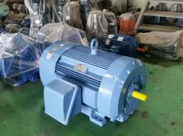 현대모터 160KW(214HP)*2P*60HZ*380V
