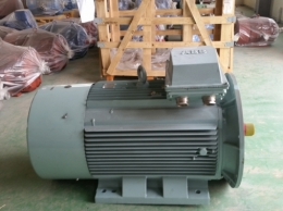 ABB모터 250KW*2P*60HZ*440V