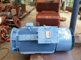 현대 버티컬 모터 310KW*4P*60HZ*460V