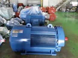 효성 내압 방폭형 모터 250HP*4P*60HZ*380V