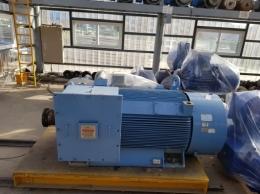현대 고압 모터 800KW*6P*60HZ*6600V