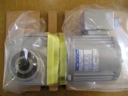 NISSEI 기어드모터[FSM-25-100-T010A]