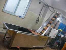 과일세척기,식품세척기,세척기