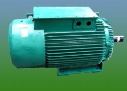 현대모터(권선형모터)