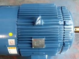 모터/모타/MOTOR/AC모터/전동기/삼상모터/삼상유도전동기/저압삼상유도전동기/효성모터 75HP