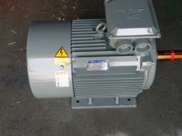 모터/모타/MOTOR/AC모터/전동기/삼상모터/삼상유도전동기/저압삼상유도전동기/LG모터 60HP