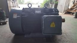 모터/MOTOR/전동기/LS모터/200HP