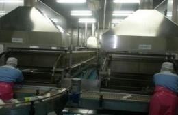 소형두부제조기,즉석두부기계,칠성종합기계