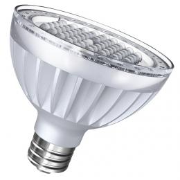 LED PAR30 13W