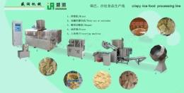 확장된 바삭한 쌀의 생산 설비