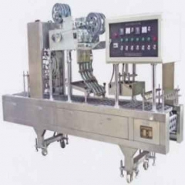 CGN-220A/CGN-220B형 자동충진포장기